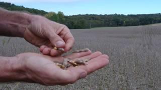 PA Soil Health Video Series featuring Dan Fabin