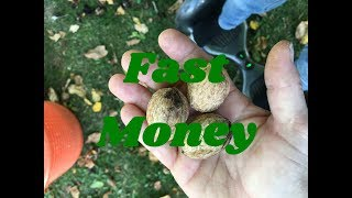 How to earn money very fast?!!!!!!!!!!!!!!