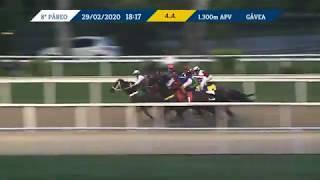 Vidéo de la course PMU PREMIO STAFFA (INTERNET)