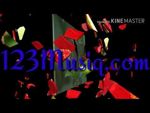 123Musiq.com@gmail.com