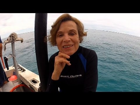 Sylvia Earle: Legendary Explorer Fights to Save Underwater Paradise