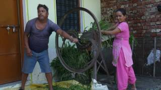 One minute India 007