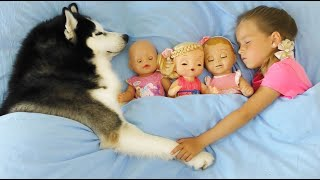 صوفيا وقصة مضحكة عن الألعاب المفضلة الدمى والكلب
