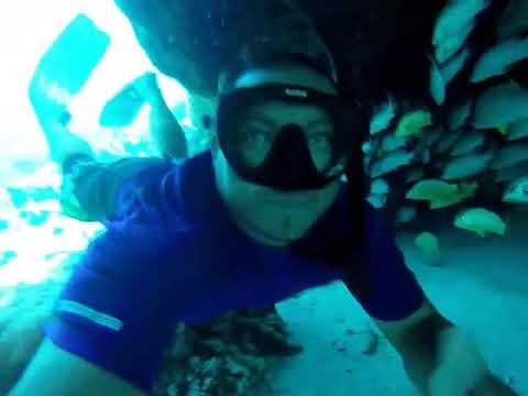 Belize sanpedro snorkleing with alot marine life 2018