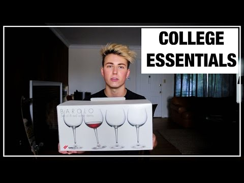 What You Need to Survive College   Cameron Phillips
