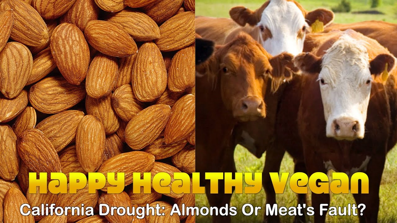 California Drought: Almonds Or Meat's Fault?