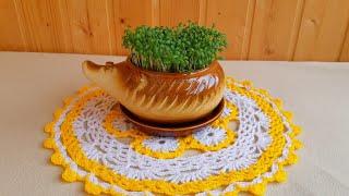 Огород на окне 2019 (томаты взошли, салат готов, лук проклюнулся, купила биогумус и базилик)