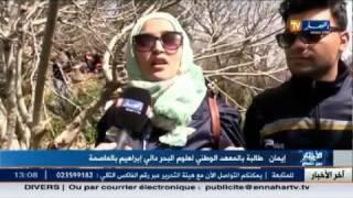 تراجع طفيف في أسعار البطاطا..و أخبار أخرى في أخبار الجزائر العميقة
