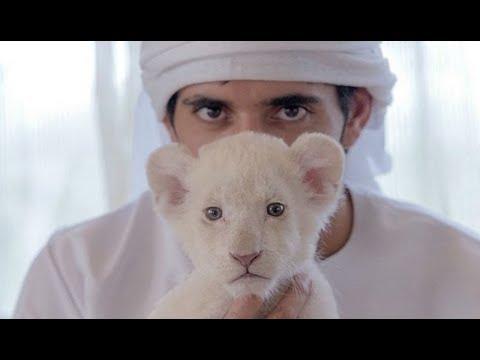 ЭТО НЕВЕРОЯТНО! Тайны жизни будущего эмира Дубая