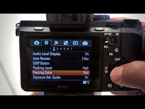 Manual Focus Tools: MF Assist and Peaking Levels on Sony Cameras