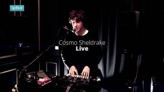 Cosmo Sheldrake - Pliocene - Qobuz Session