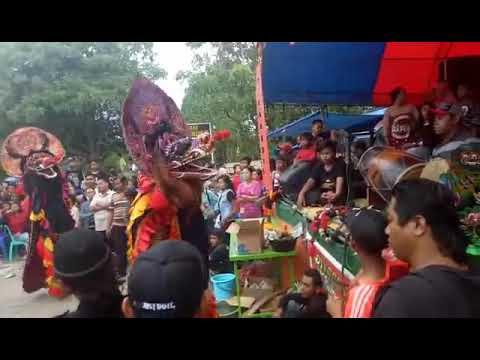 Singo Barong LILO lagu Ayah|Turonggo Manunggal Budoyo