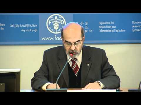 Statement by José Graziano da Silva, new FAO Director-General