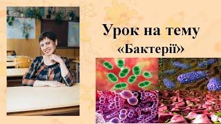Бактерії. Уроки біології. підготовка до ЗНО. 2019. Важливі теми.
