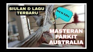 HD Audio Masteran Kicau Burung Parkit Australia Falk Cockateil Kakak Tua Mini Banyak Variasinya