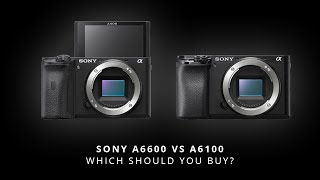 Sony A6100 vs A6600 | Our Sony A6600 Review & Sony A6100 Review