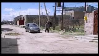 Армянский юмор ))) как нельзя пить