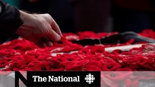 Remembrance Day   Armistice signed 100 years ago