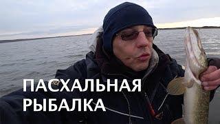 ЛОВЛЯ ПАССИВНОЙ ЩУКИ Пасхальная рыбалка