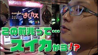 【まどカス】弱チェ打ちしてみた【sasukeのパチスロ卍奴#8】 thumbnail