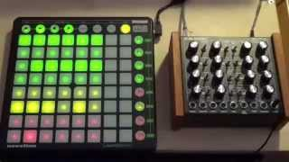 Night Jam - Doepfer Dark Energy, Juno 106, Launchpad, Ableton Live