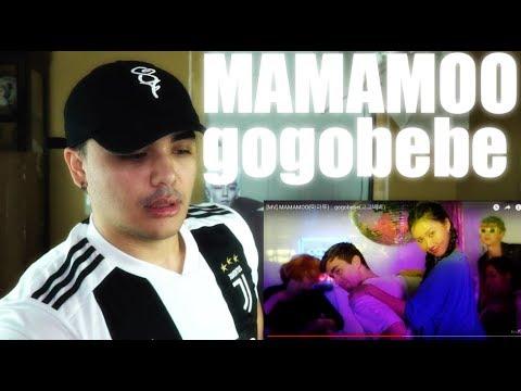 MAMAMOO - gogobebe MV Reaction | TOTALLY NOT JEALOUS O_O