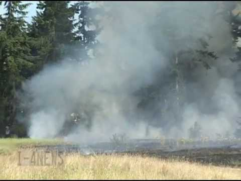 Pioneer Valley Elementary School Brush Fire Caused By Fireworks Spanaway WA