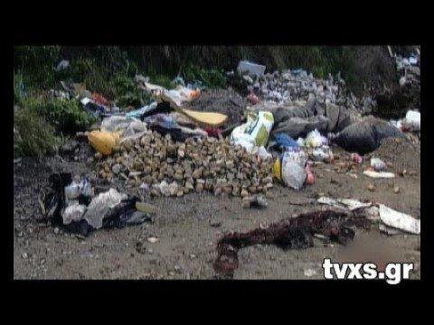 TVXS VIDEO