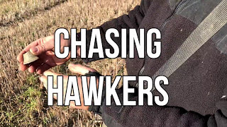 We chase medieval treasure hunting hawkers. WATCH THE CHASE AS IT HAPPENS!