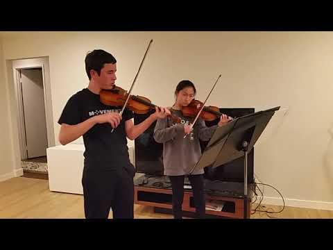 Bach Double Violin Concerto 1st Movement