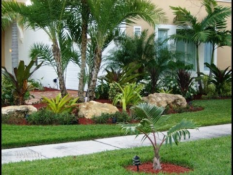 tropical garden design Best Ideas for Tropical Landscaping - YouTube