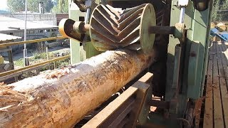 Amazing Automatic Wood Sawmill Machines Modern Technology   EXTREME Fast Wood Cutting Machine