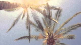 Chill Out Under The Palms Mix