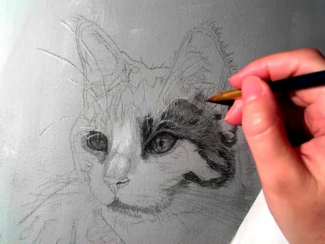Time Lapse of Grisaille underpainting for a new Pet Portrait.  Part 1.