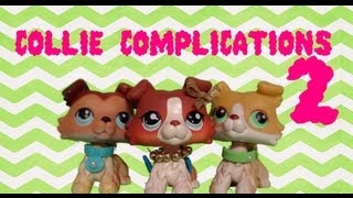 Collie Complications 2: Tickets for none, anyone? Thumbnail