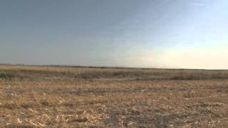 Agri Properties - FarmVideo 258 ha land in Romania for sale