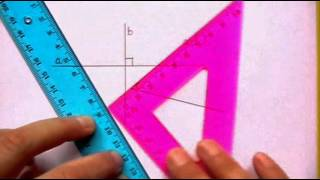 Drawing and Naming Perpendicular Lines (using a triangle and ruler)