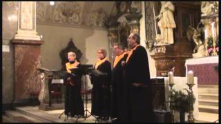 Stimmtoniker - Prayer of St. Francis