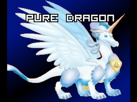 Dragon City - Breed PURE Dragon EASY!!! [5]