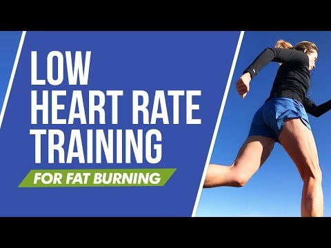 Understanding Low Heart Rate Training for Fat Burning and More | RunToTheFinish