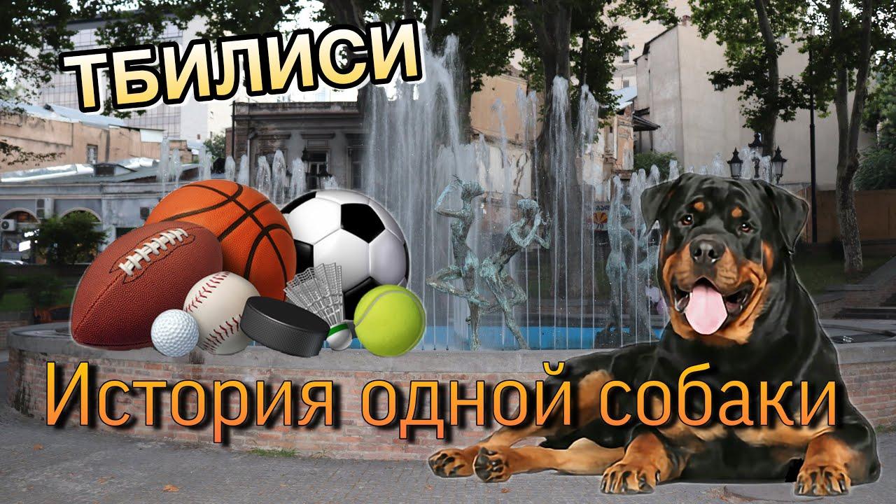 История Одной Собаки / Блог Диджея