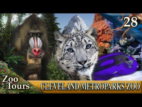 Zoo Tours Ep. 28: Primates, Cats, & Aquatics || Cleveland MetroParks Zoo