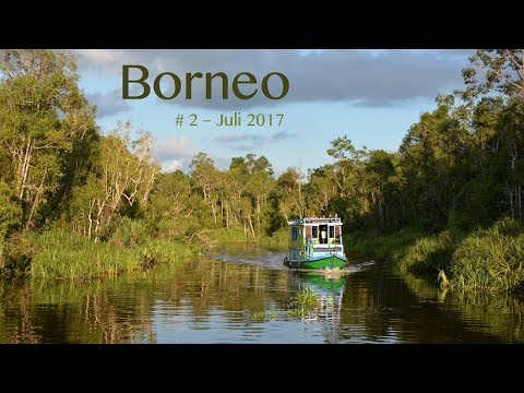 House Boat-Tour In The Jungle Of Borneo - #2