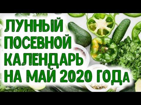 Лунный посевной календарь на май 2020 года Агропрогноз посевов семян овощных и цветочных растений. | астропрогноз | агрогороскоп | агропрогноз | календарь | горяченко | посевной | дачников | лунный | май_2020 | раиса