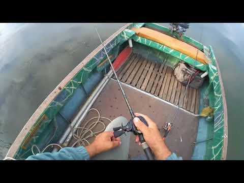Ловля судака на джиг - техника и приемы ловли, видео урок