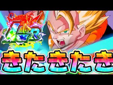 【ドッカンバトル】演出過去最高!新LRゴジータの性能キタキタキター!!!【Dragon Ball Z Dokkan Battle】