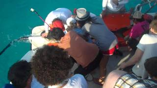 Good World Games Founder, Gregory Sukornyk, shark-tagging for science with the University of Miami