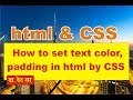 how to set text color in html by css | make website html css