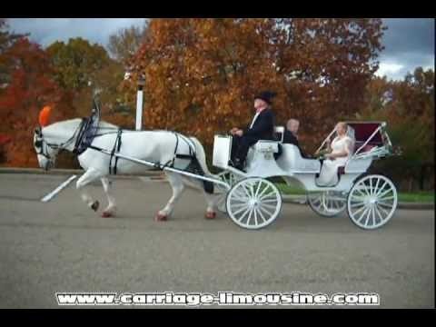 Horse Drawn Carriage Wedding Victorian 34 Limousine Service