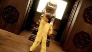 Kung Fu Fighting - Kung Fu Panda Music video